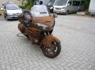 Rat Bike_5