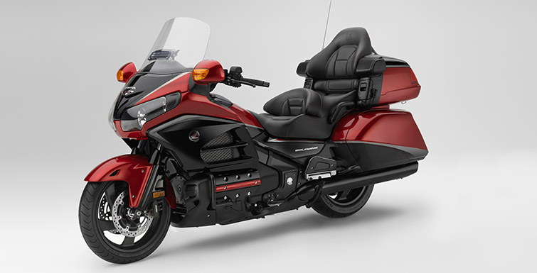 GoldWing_2015_06.jpg
